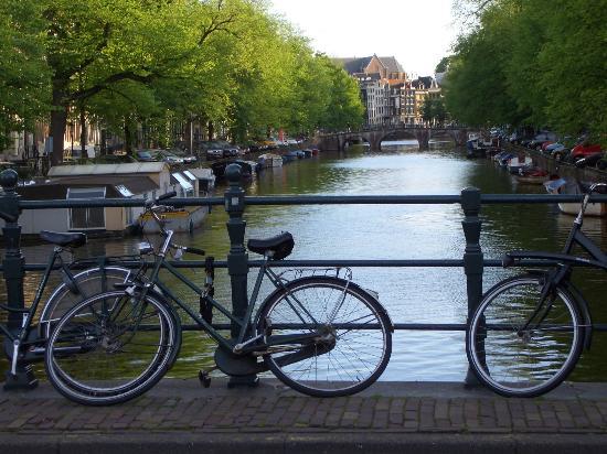 Biciclete, mori de vant, Van Gogh