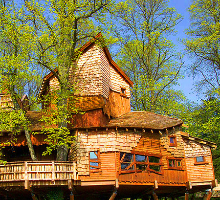 opened in january 2005 the treehouse at alnwick gardens is a labyrinth of turrets treetop walkways and cavernous spaces at 6000 square feet - Most Expensive Tree House In The World