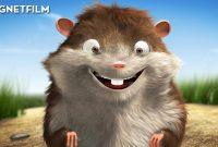 Salut! Eu sunt Bob