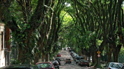 Cea mai frumoasa strada din lume