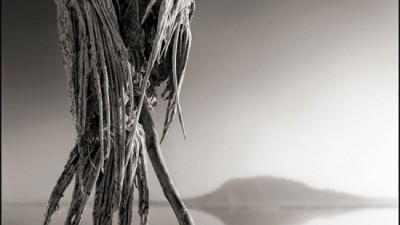 Macabrele statui tanzaniene