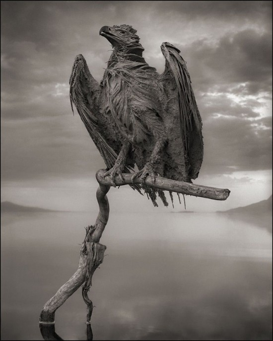 Lake-Natron3