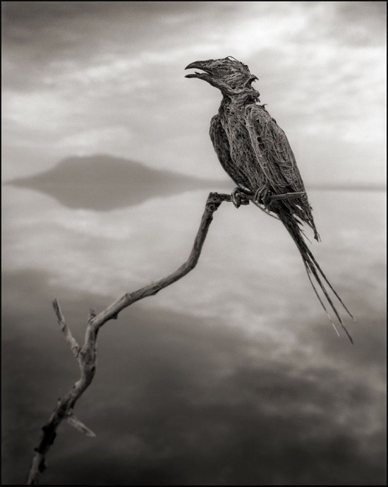 Lake-Natron6