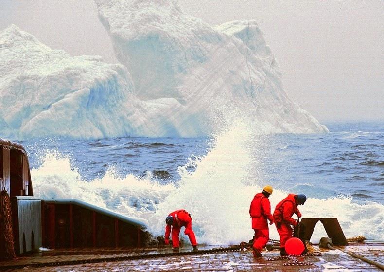 lesa pentru iceberg