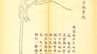Fragil manual de caligrafie