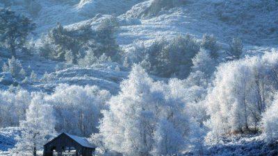 Zăpada